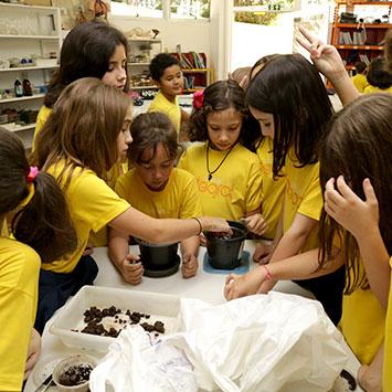 Ensino Fundamental 1 - Ciências da Natureza